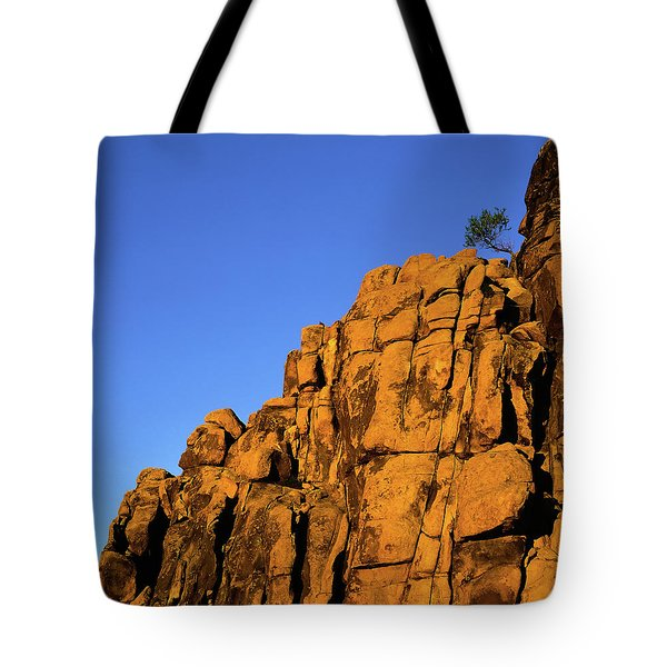 The Upper Deck Tote Bag