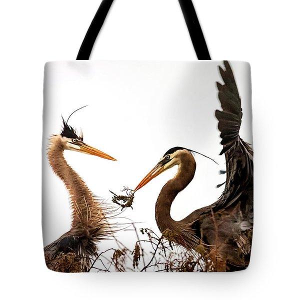 The Valentine's Gift Tote Bag by Cyndy Doty