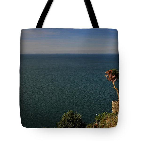The Valley Of The Rocks Tote Bag