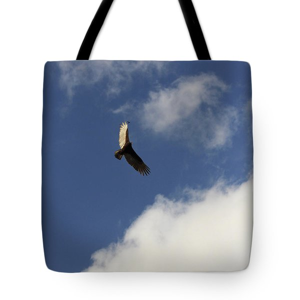 Tote Bag featuring the photograph The View  by Kim Henderson