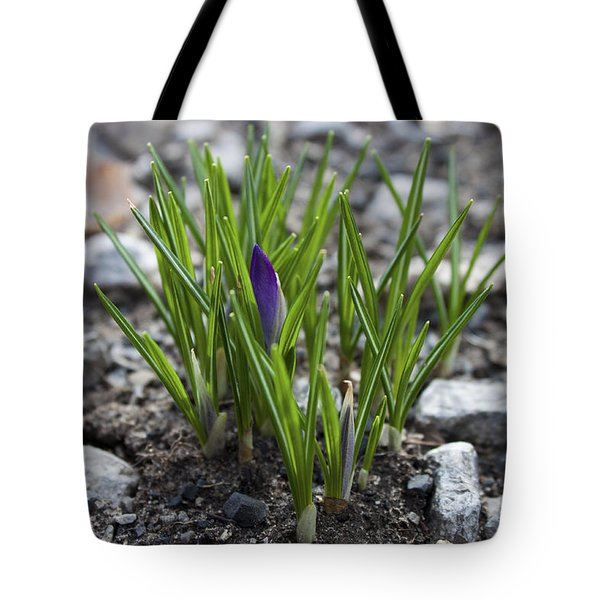 The Wait Tote Bag by Jeff Severson