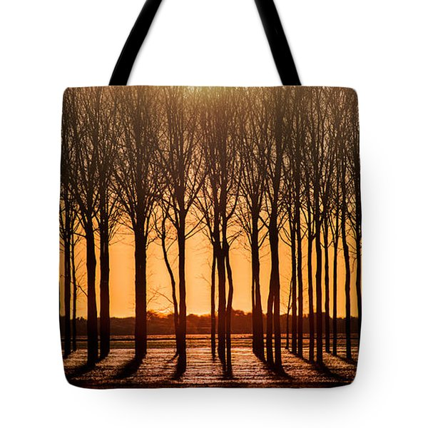 The Walnut Grove Tote Bag