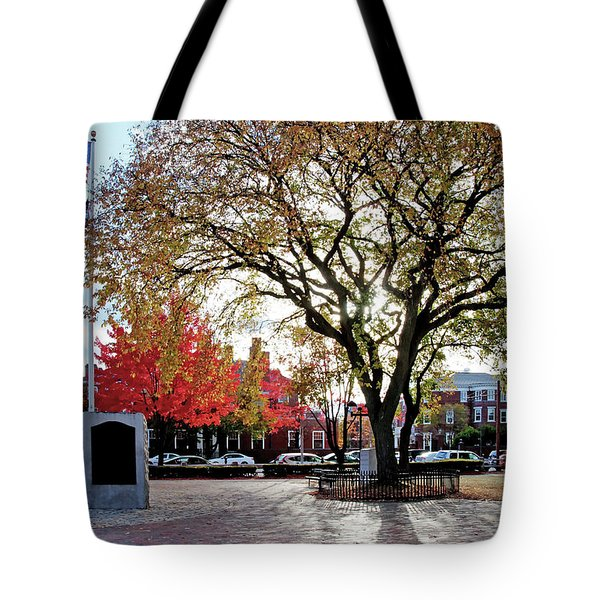 Tote Bag featuring the photograph The Washington Elm by Wayne Marshall Chase