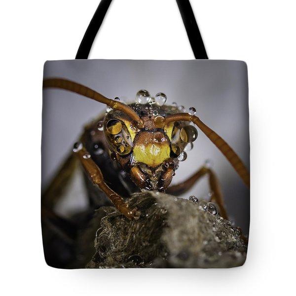 The Wasp Tote Bag