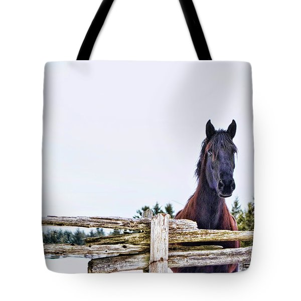 The Watcher 2 Tote Bag