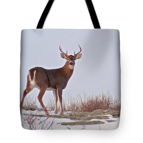 The Watchful Deer Tote Bag