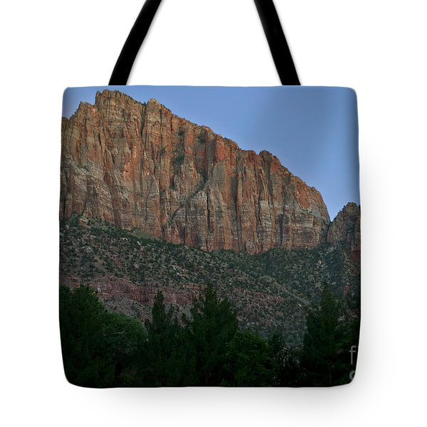 Tote Bag featuring the photograph The Watchman And The Moon by Suzette Kallen