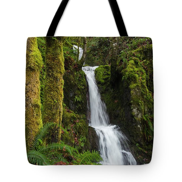 The Water Staircase Tote Bag