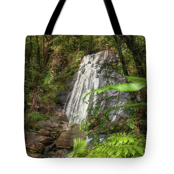 Tote Bag featuring the photograph The Waterfall by Hanny Heim