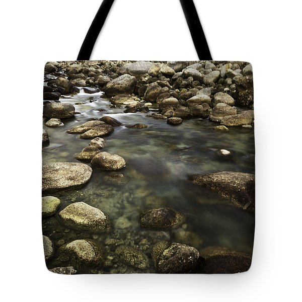 The Waters Flow Tote Bag by Rajiv Chopra