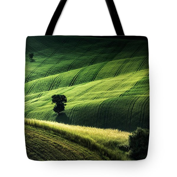 The Way The Light Falls Tote Bag