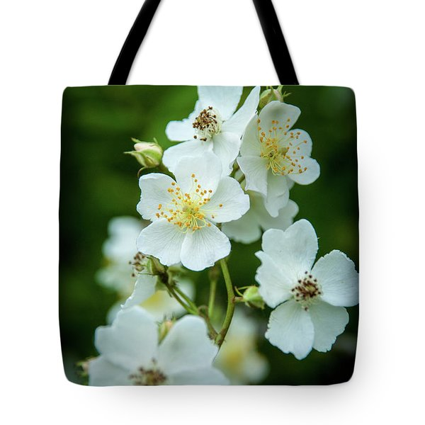 Tote Bag featuring the photograph The Wild Rose by Mark Dodd