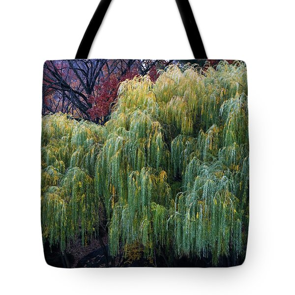 The Willows Of Central Park Tote Bag