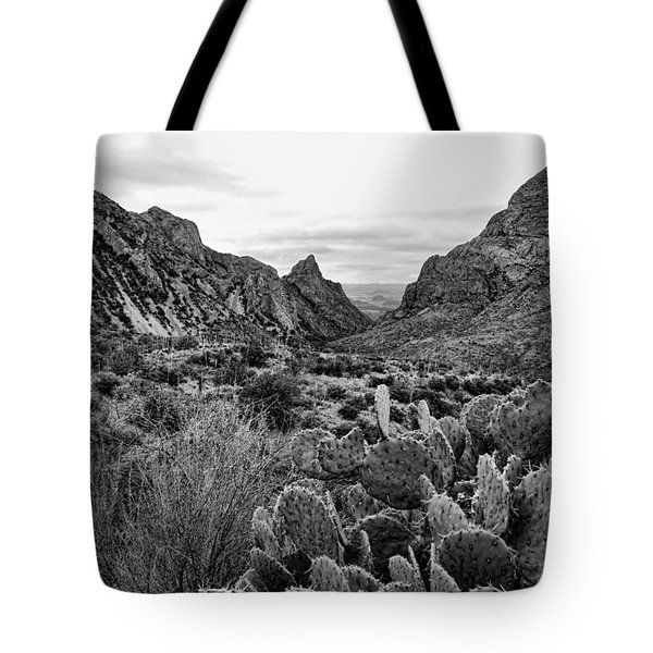 The Window 2 Black And White Tote Bag