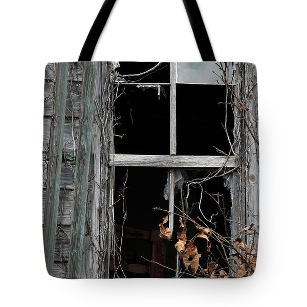 The Window Tote Bag by Amanda Barcon