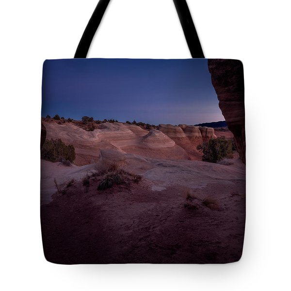The Window In Desert Tote Bag