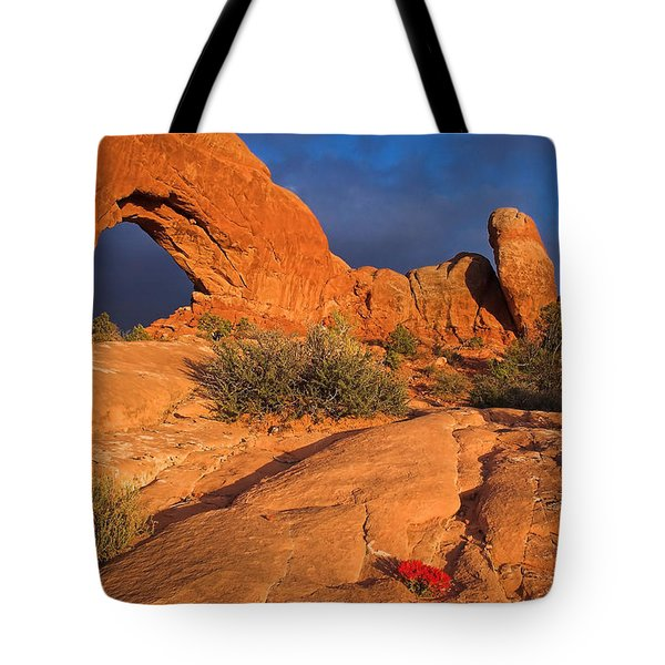 Tote Bag featuring the photograph The Window by Steve Stuller