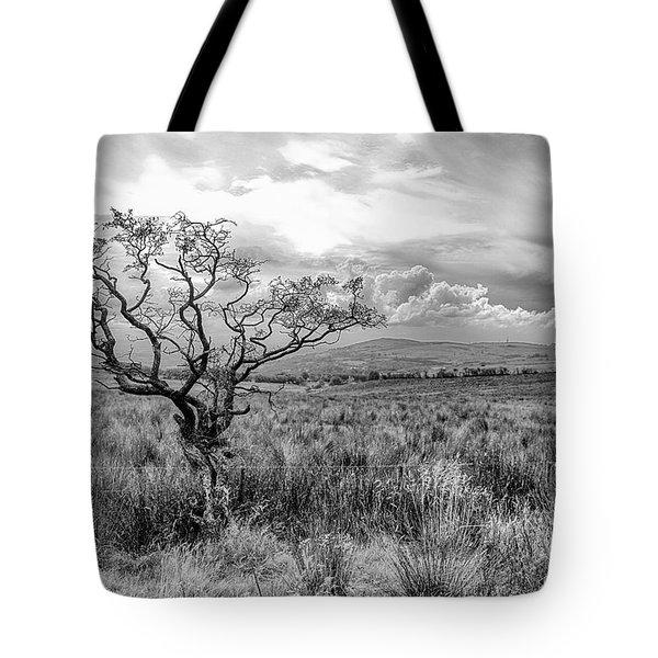The Windswept Tree Tote Bag