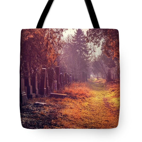 The Winter Path  Tote Bag