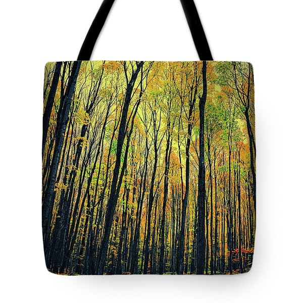 Tote Bag featuring the photograph The Woods In The North by Michelle Calkins