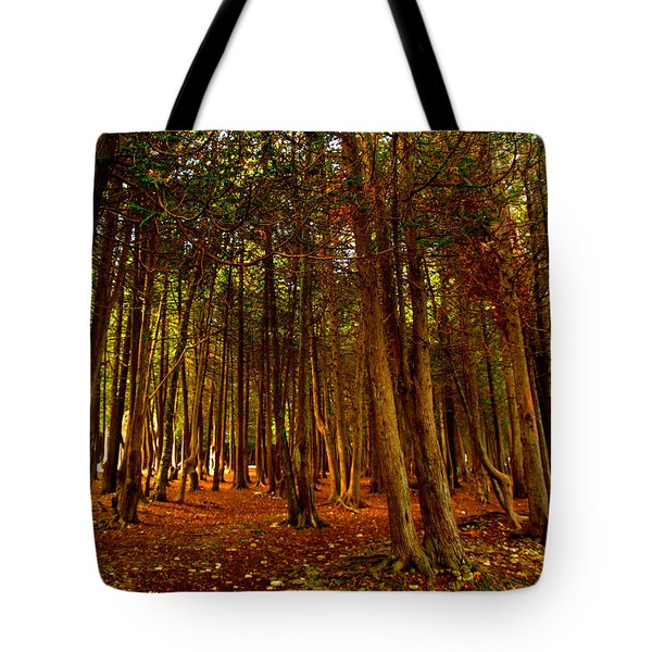 Tote Bag featuring the photograph The Woods by John Hartman