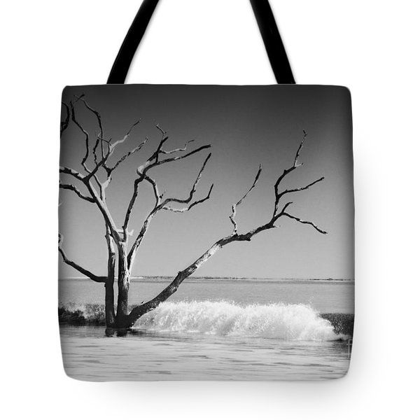 Tote Bag featuring the photograph The World Is Coming Down II by Dana DiPasquale