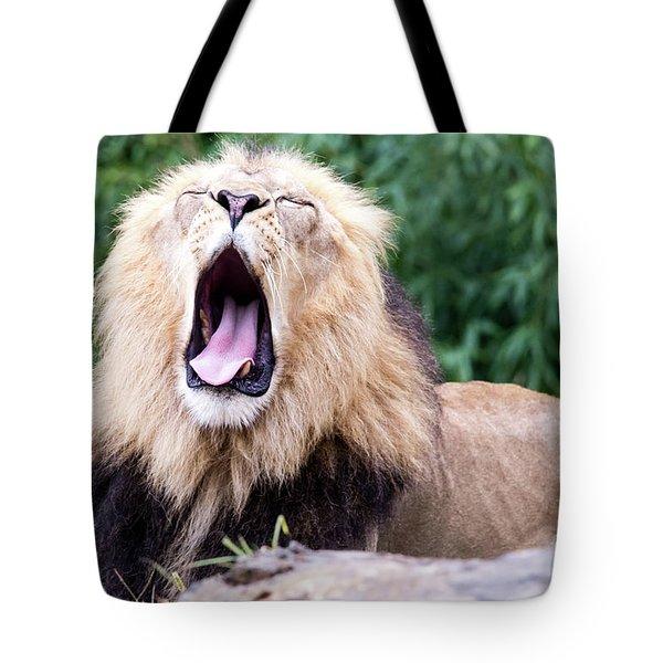 The Yawn Tote Bag