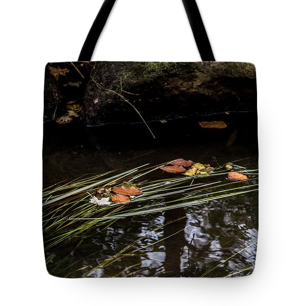 The Year Passes Gently Tote Bag