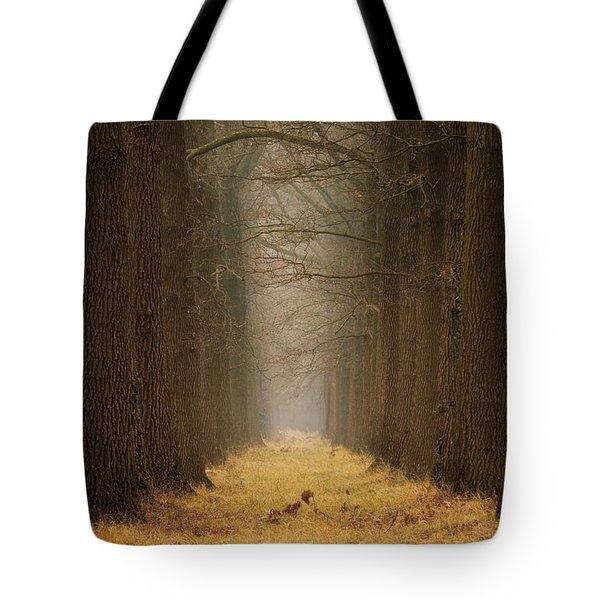 Yellow Path Tote Bag