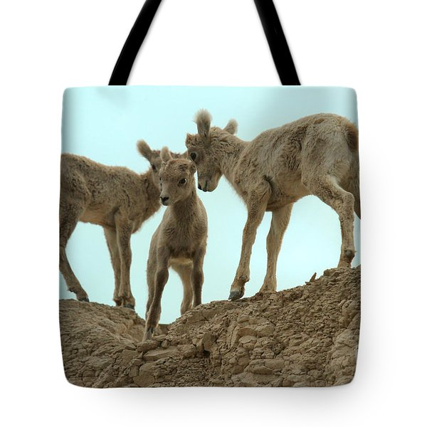 The Younger Brother Tote Bag