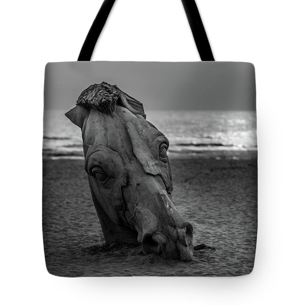 The Youth And The Horsehead Tote Bag