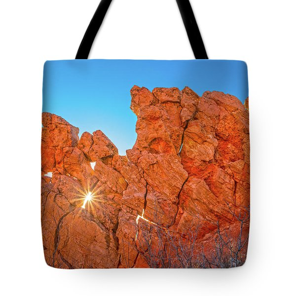 There Are Treasure In Books That All The Money In The World Cannot Buy.  Tote Bag