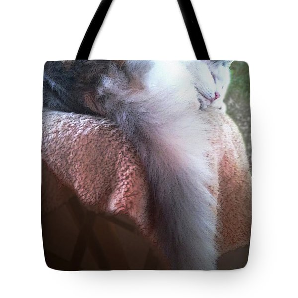 Thereby Hangs A Tail Tote Bag