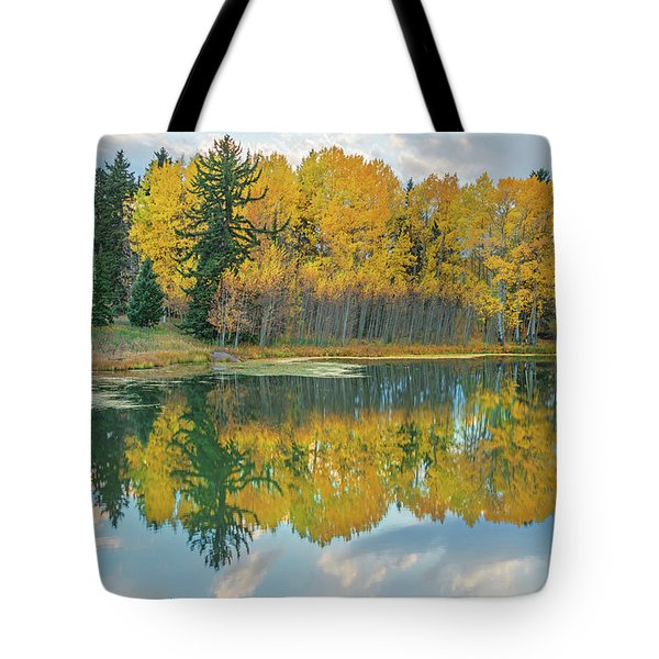 There's A Belvedere By This Pond.  Tote Bag