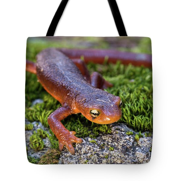 They Do Exist Tote Bag