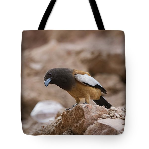Thinking Treepie Tote Bag