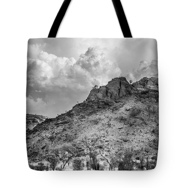 Thirsty Earth Tote Bag