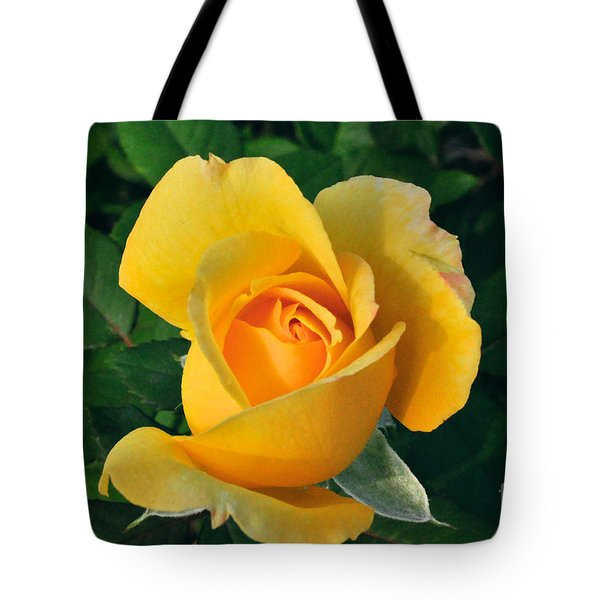This Bud's For You Tote Bag by Sandy Molinaro