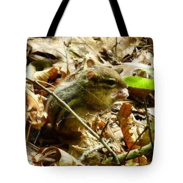Chipmunk In The Leaves Tote Bag