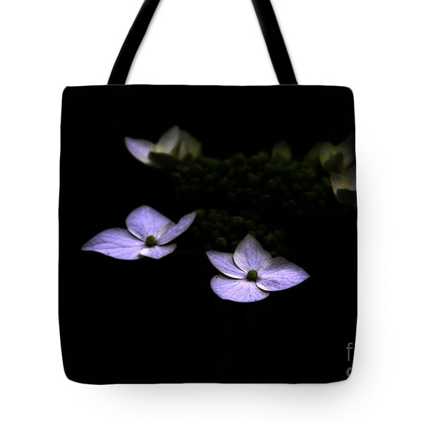 This Little Light Of Mine Tote Bag by Amanda Barcon