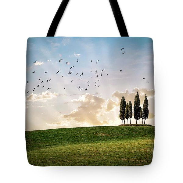 This Majestic Land Tote Bag