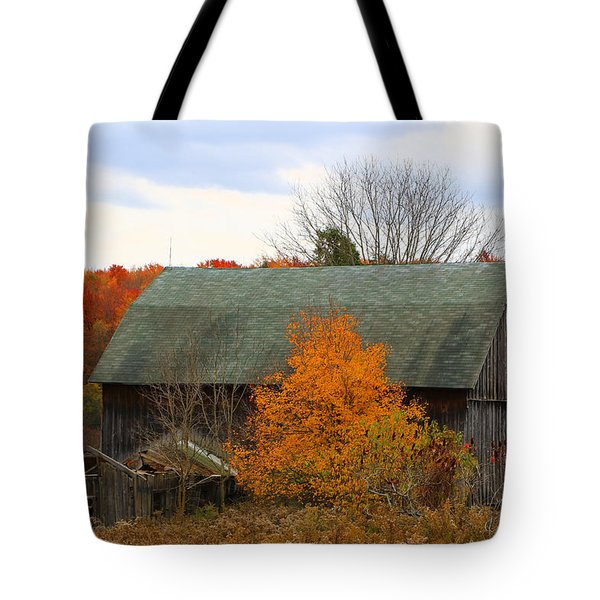 This Old Barn Tote Bag