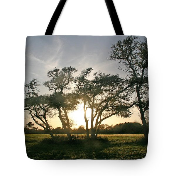 Tote Bag featuring the photograph This One Is For You by Phil Mancuso