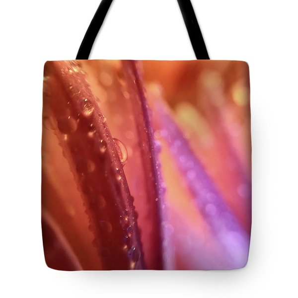 One Rainy Wish Tote Bag