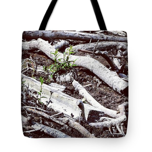 This Was A Lake 10 Years Ago I Feel Old Tote Bag