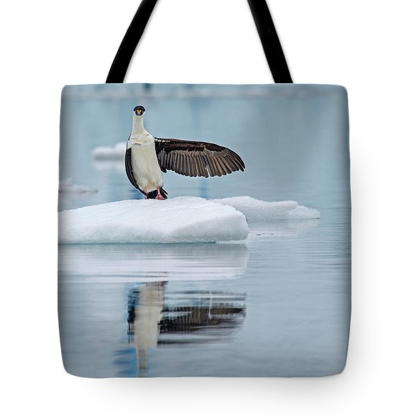 Tote Bag featuring the photograph This Way by Tony Beck