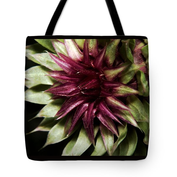 Thistle 01 Tote Bag by Karen Musick