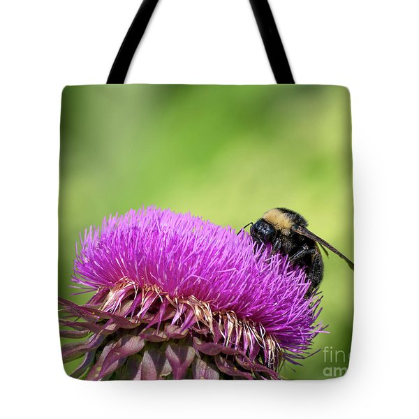 Thistle And Bee Tote Bag