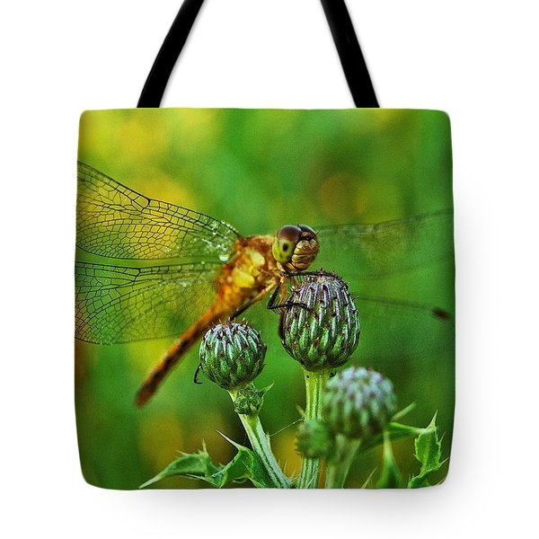 Thistle Dragon Tote Bag by Michael Peychich