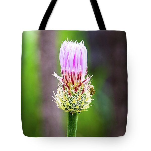Thistle In The Canyon Tote Bag